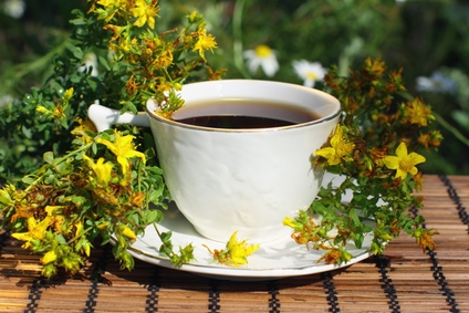 infuser les plantes m dicinales altheaprovence. Black Bedroom Furniture Sets. Home Design Ideas
