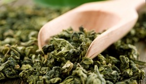 Thé vert (Camelia sinensis)