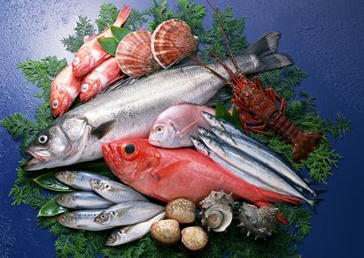Alimentation saine : poissons