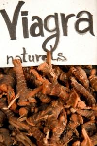 Impuissance sexuelle : viagra naturel