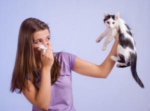 Traitement des allergies