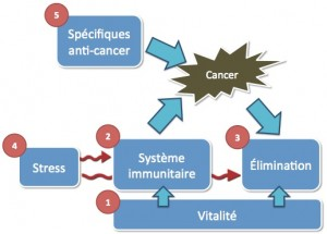 Cancer : stratégie