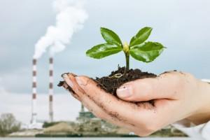 Détoxification métaux lourds