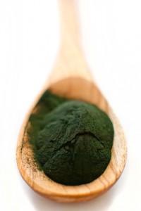 Détoxification métaux lourds : la chlorella