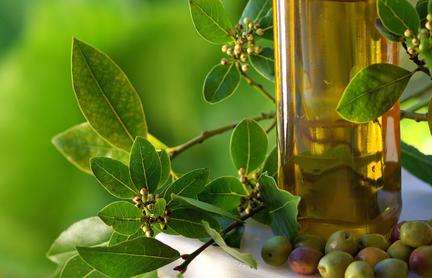 Nettoyage du foie - huile d'olive à jeun