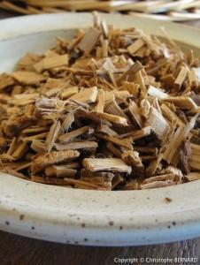 Nettoyer le foie : aubier de tilleul