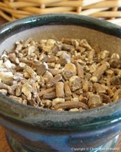 Nettoyer le foie : racine de pissenlit