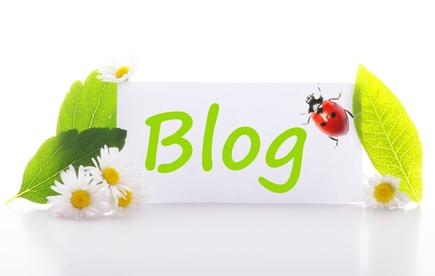 Meilleurs blogs