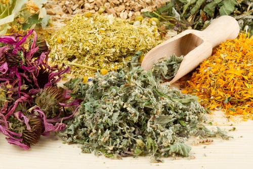 plantes système immunitaire