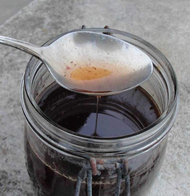 Miel de monarde pour le mal de gorge (Monarda didyma)