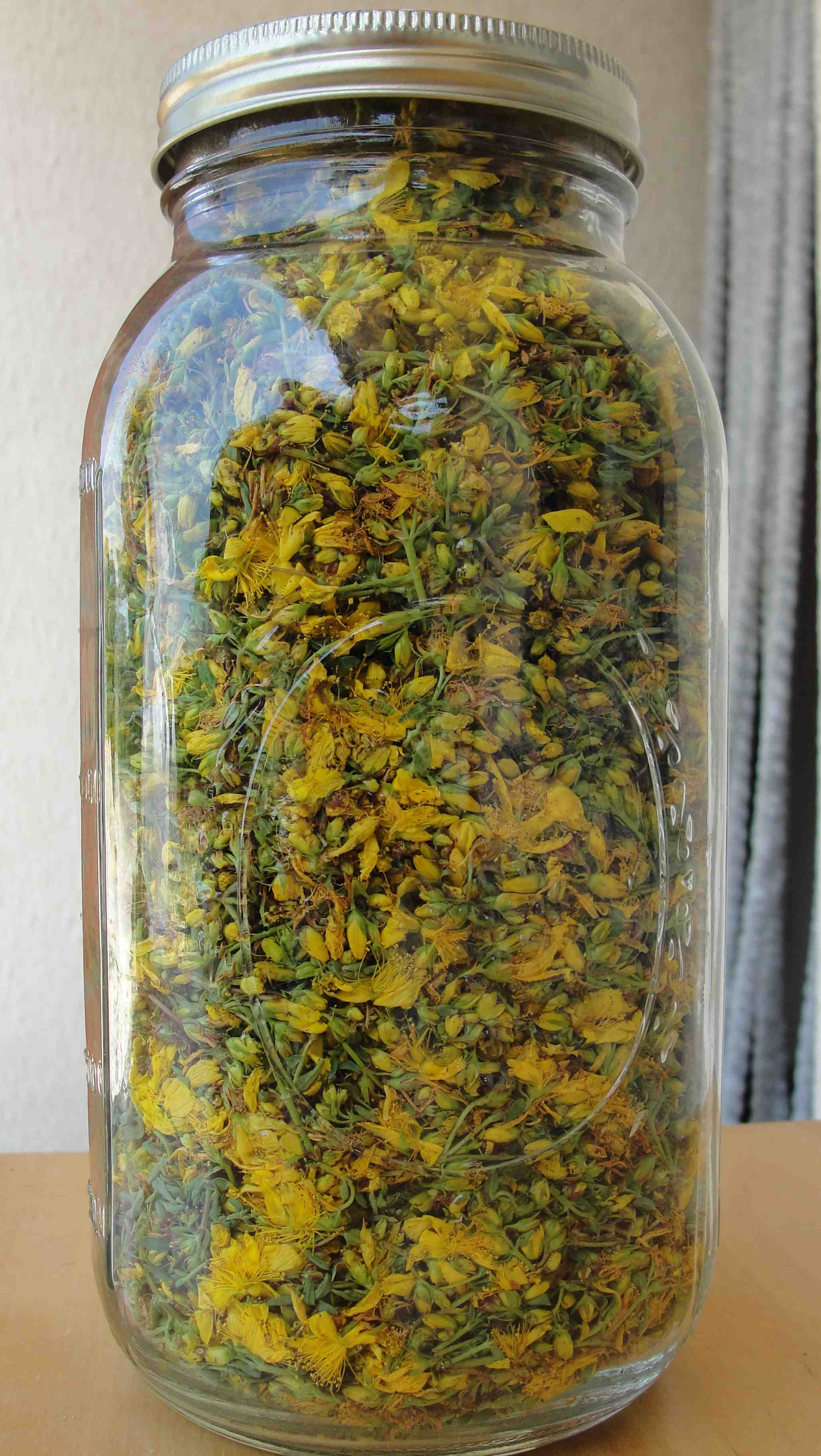 Teinture de millepertuis (Hypericum perforatum) - avant ajout d'alcool - Photo AltheaProvence